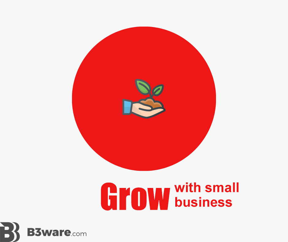 B3Ware - Review Criteria - Grow with Small Business